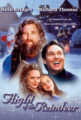 Flight of the Reindeer (The Christmas Secret) (2000) ผจญภัยเมืองมหัศจรรย์